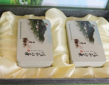 广东靖安白茶